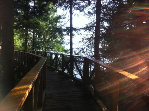 Boardwalk at rockwater