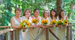 Amber Eric s Wed 0338